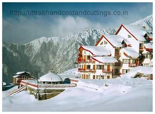 Hotels in Auli