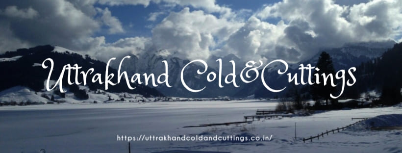 Logo https://uttrakhandcoldandcuttings.co.in/