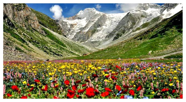 Zanskar Ranges in the Valley of flowers